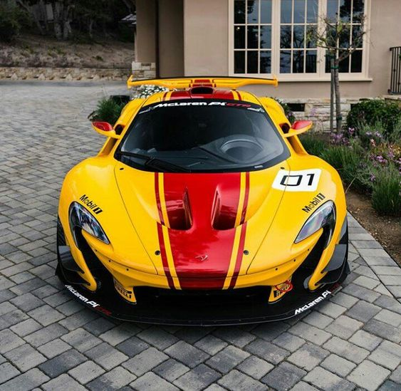 A racing car is an animal with a thousand adjustments. - McLaren P1 GTR